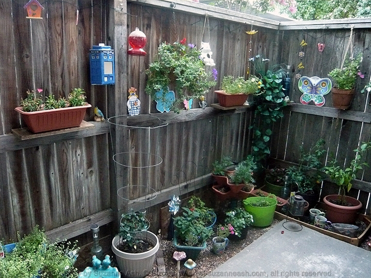 My Patio Garden III 02